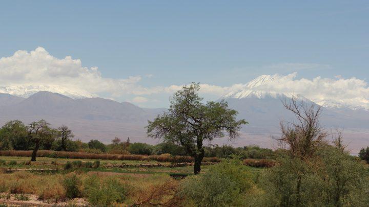 Review Restaurant Tierra Atacama
