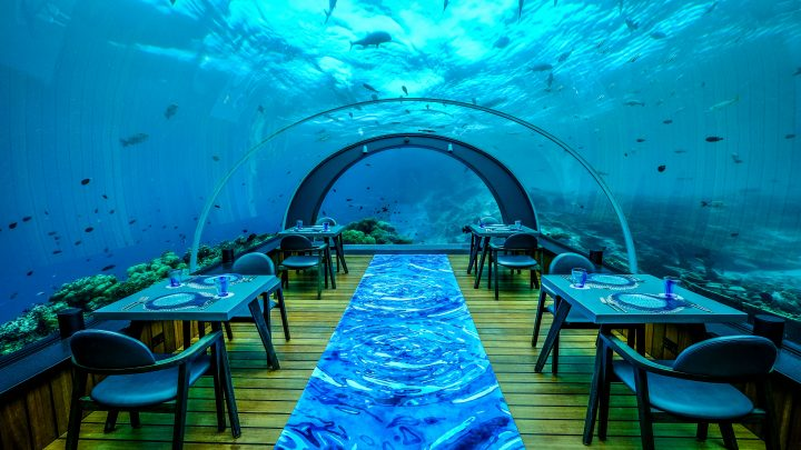 Review Restaurant 5.8 Undersea Restaurant